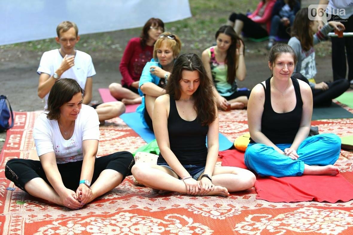 В Запорожском парке отметили международный день йоги, - ФОТОРЕПОРТАЖ, фото-14