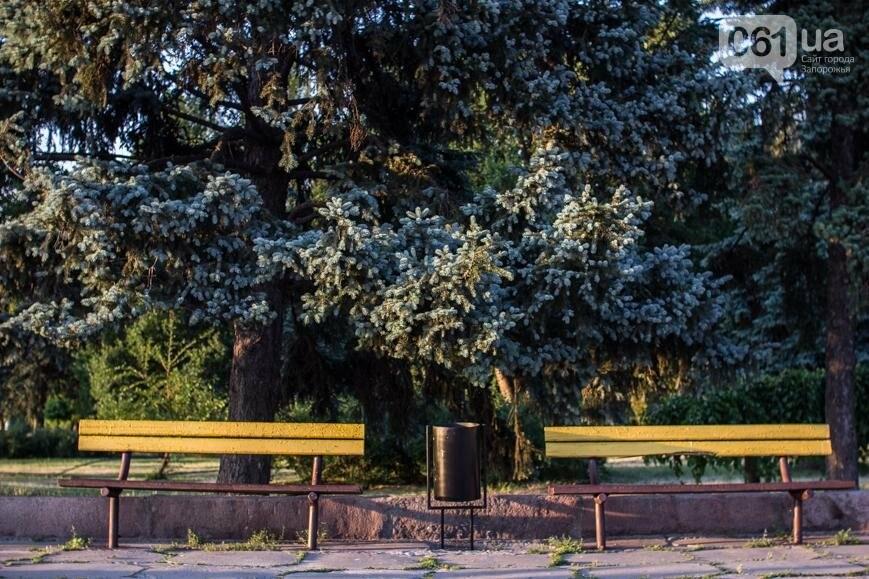 Ямы, разбитая плитка и переполненные урны: фотопрогулка возле речного порта и площади Запорожской, фото-9