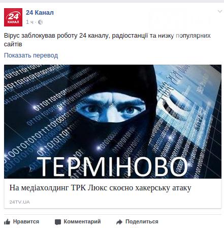 В Украине крупные предприятия подверглись хакерской атаке, — ПОДРОБНОСТИ, ОБНОВЛЯЕТСЯ, фото-4