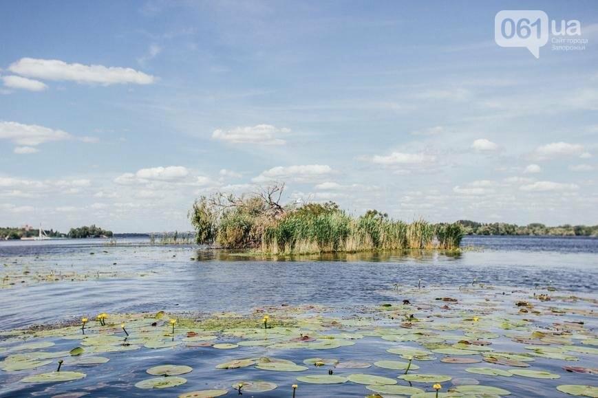 """Тырло, саламур и """"дикари"""": один день на острове посреди Днепра, - ФОТОПРОЕКТ, фото-34"""