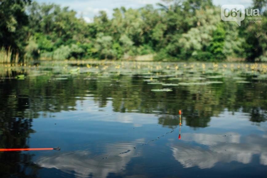 """Тырло, саламур и """"дикари"""": один день на острове посреди Днепра, - ФОТОПРОЕКТ, фото-37"""