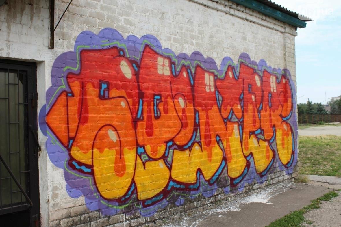 В Запорожье стадион «Локомотив» разрисовали граффити, — ФОТОРЕПОРТАЖ, фото-3