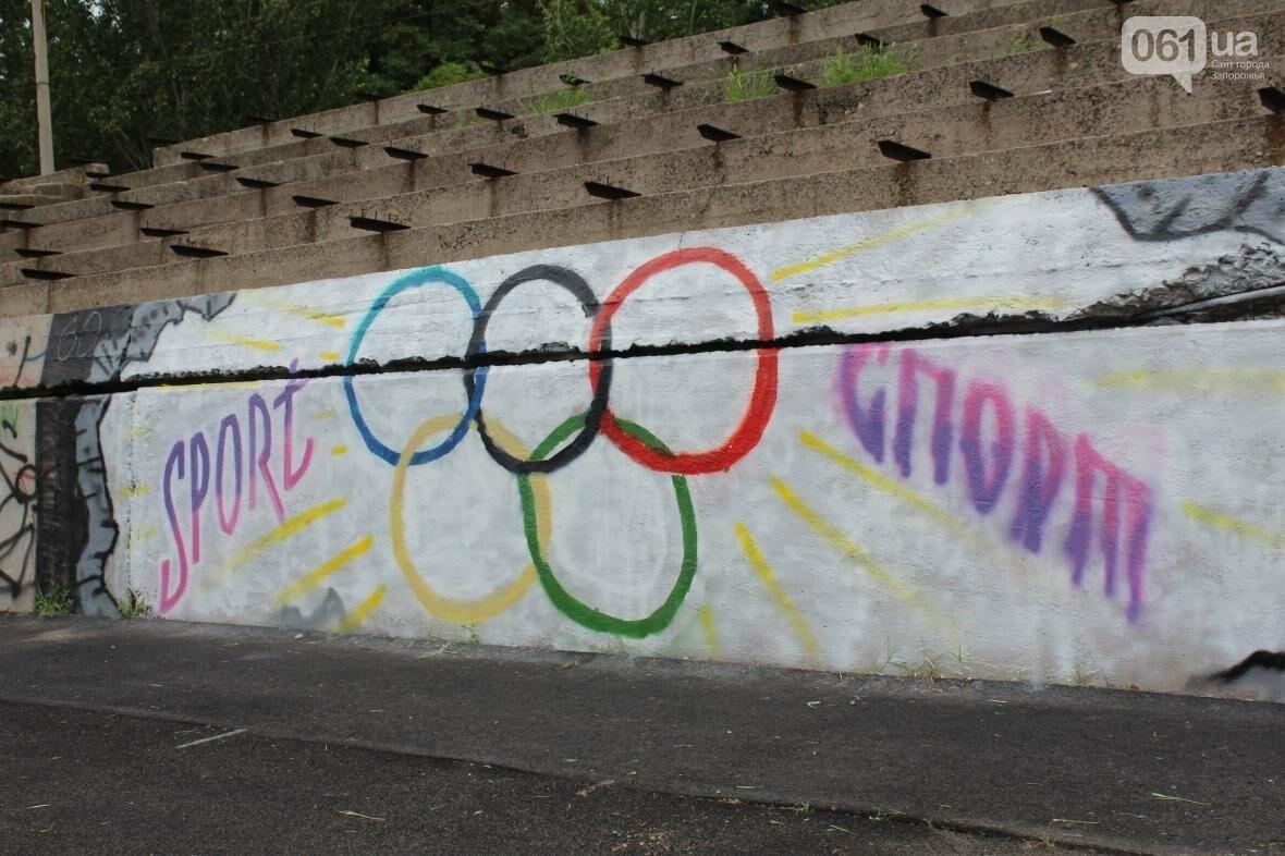 В Запорожье стадион «Локомотив» разрисовали граффити, — ФОТОРЕПОРТАЖ, фото-9