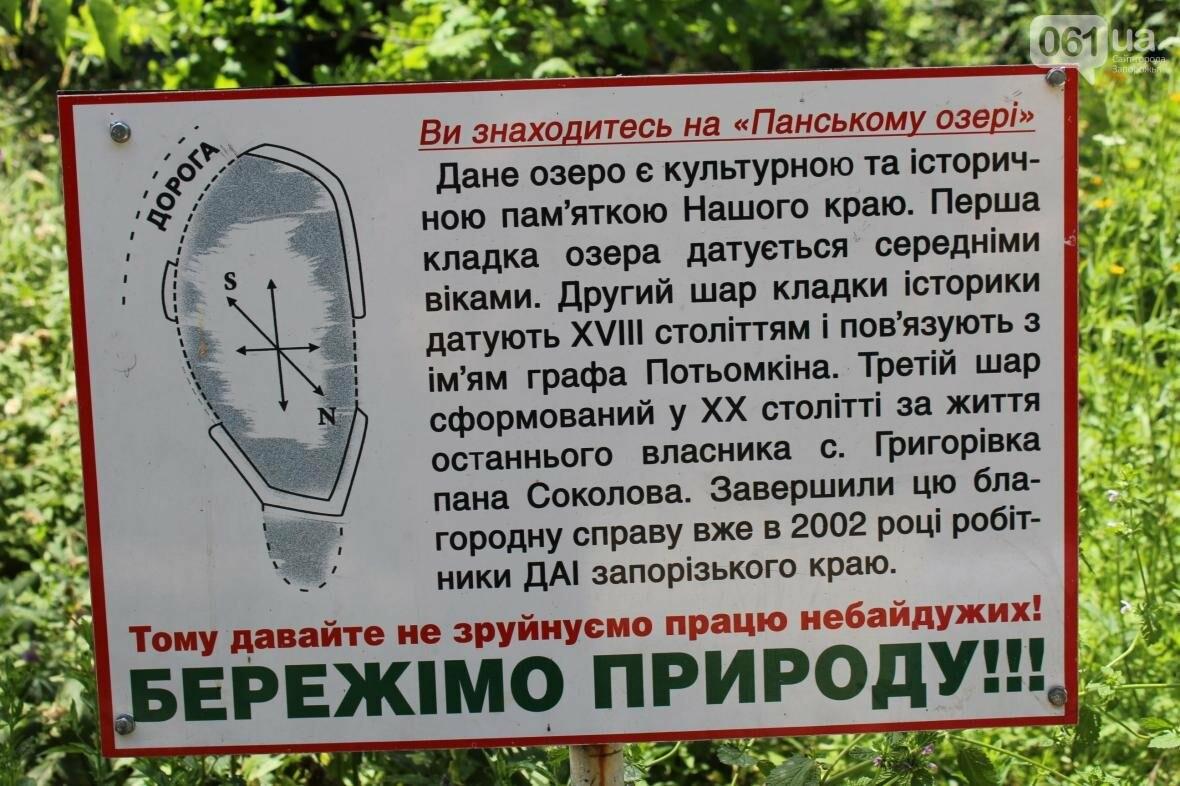 Поездка из Запорожья на Панское озеро: как добраться и что там делать, – ФОТОРЕПОРТАЖ, фото-7