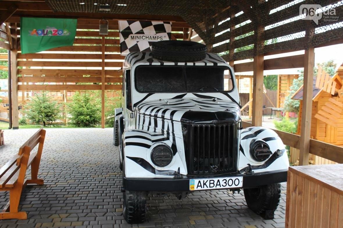 Экскурсия по «Аquazoo-Петрополь»: как доехать, что увидеть и чем заняться в усадьбе зеленого туризма, – ФОТОРЕПОРТАЖ, фото-19