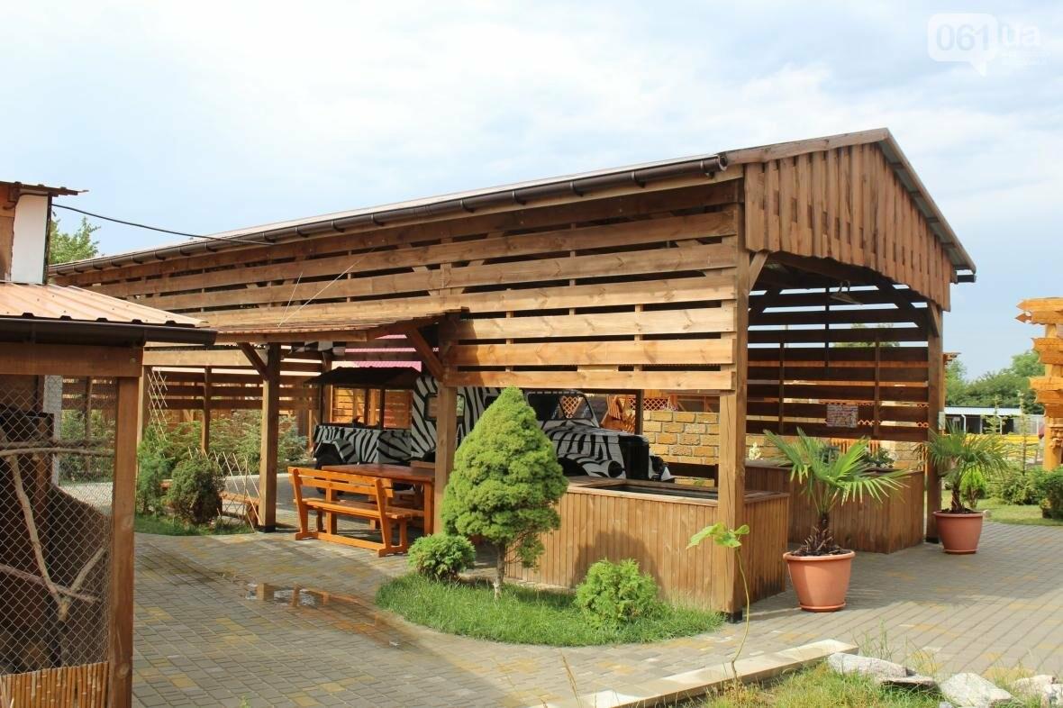 Экскурсия по «Аquazoo-Петрополь»: как доехать, что увидеть и чем заняться в усадьбе зеленого туризма, – ФОТОРЕПОРТАЖ, фото-7