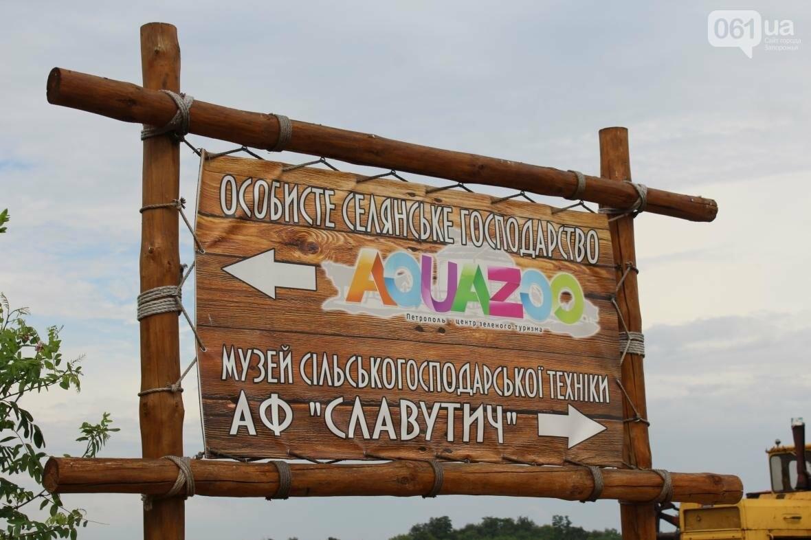 Экскурсия по «Аquazoo-Петрополь»: как доехать, что увидеть и чем заняться в усадьбе зеленого туризма, – ФОТОРЕПОРТАЖ, фото-4