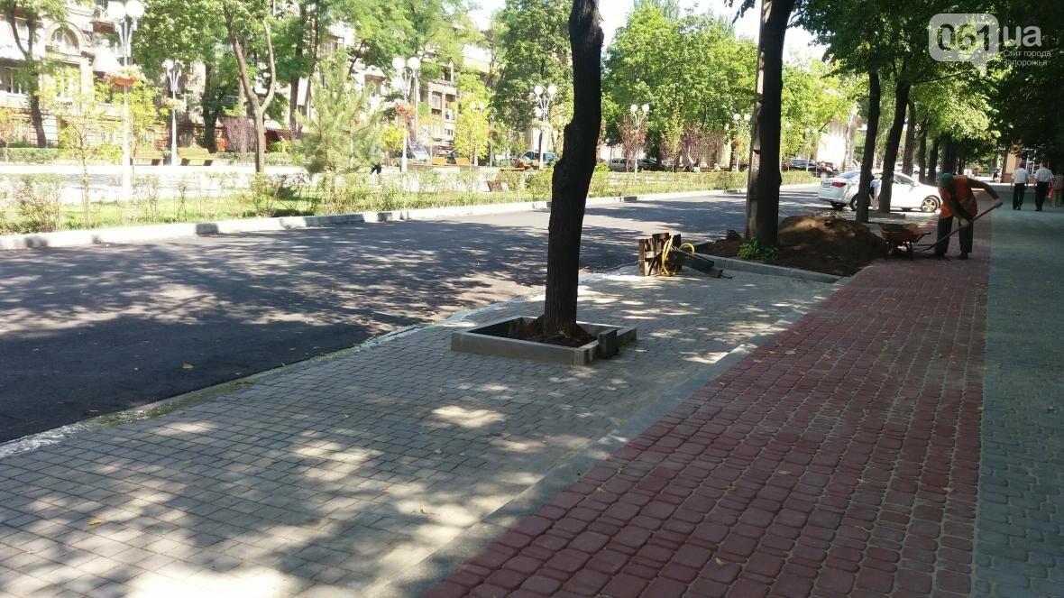 В Запорожье наполовину закончили реконструкцию дороги на Маяковского: обновили асфальт, тротуар и сделали парковки, — ФОТОРЕПОРТАЖ, фото-6