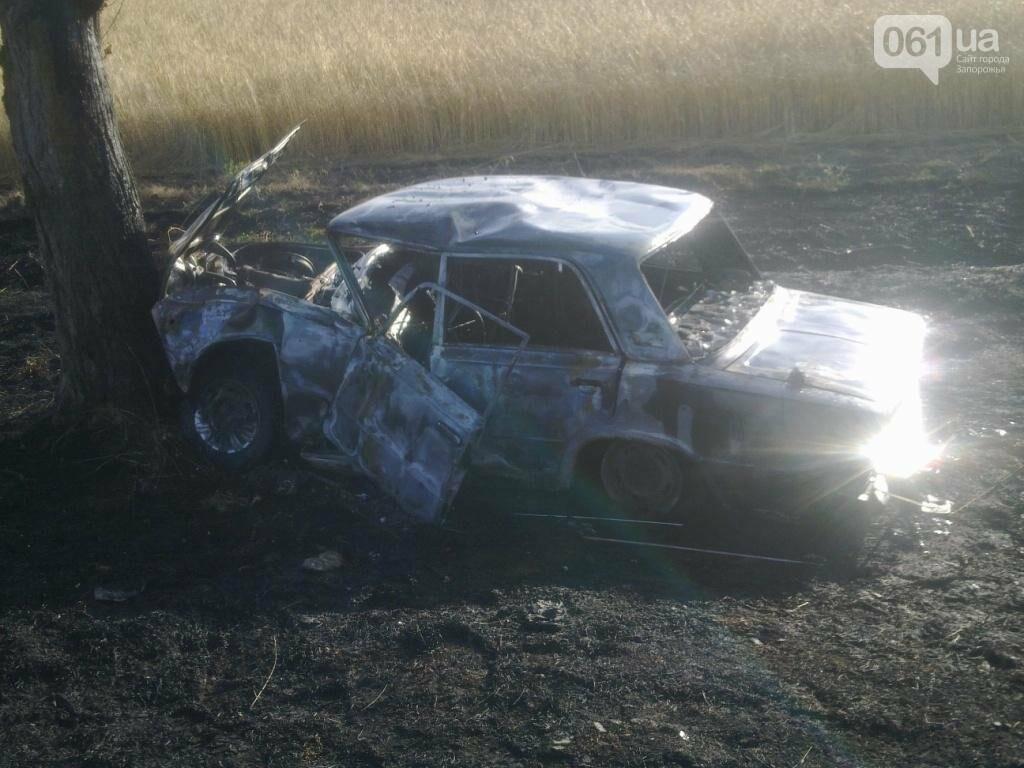 В Запорожской области автомобиль вылетел в кювет и сгорел дотла, – ФОТО, фото-1