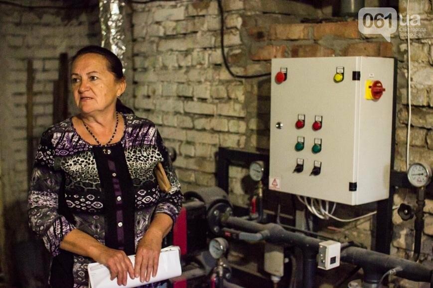 Как запорожцы избавляются от энергозависимости и круто на этом экономят: 3 удивительные истории, фото-17