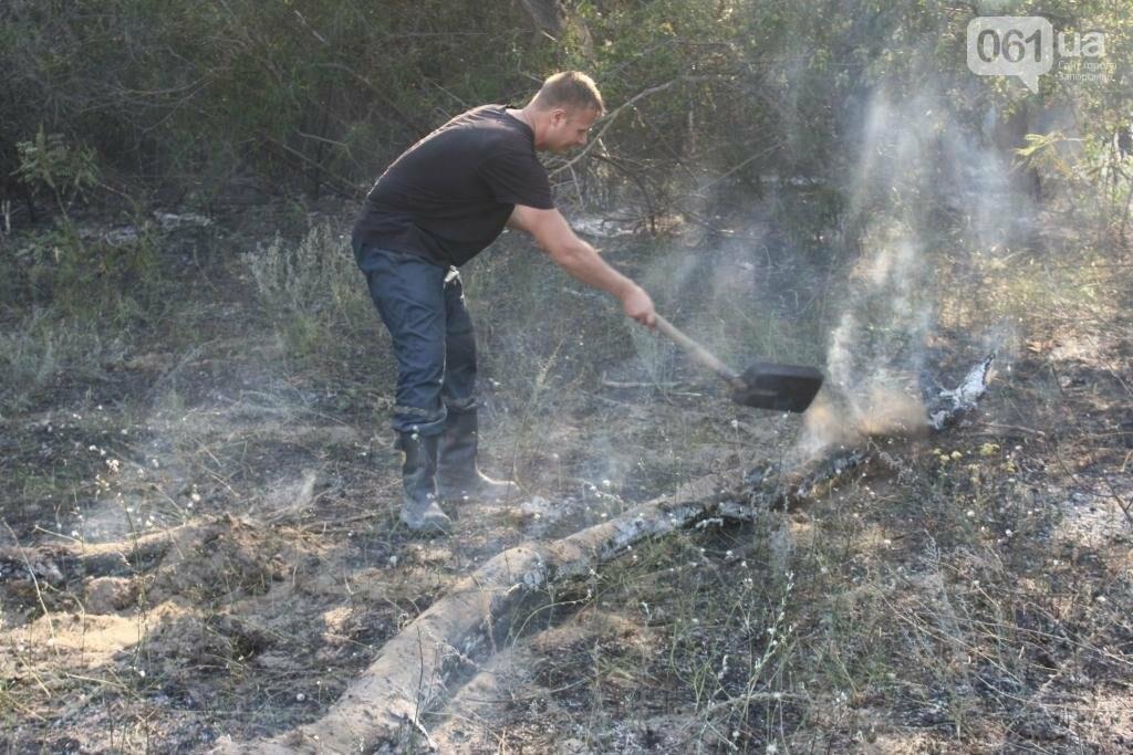 На запорожской Хортице потушили очередной крупный пожар, – ФОТО, фото-4