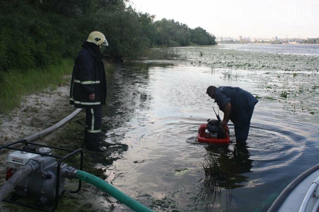 На запорожской Хортице потушили очередной крупный пожар, – ФОТО, фото-1