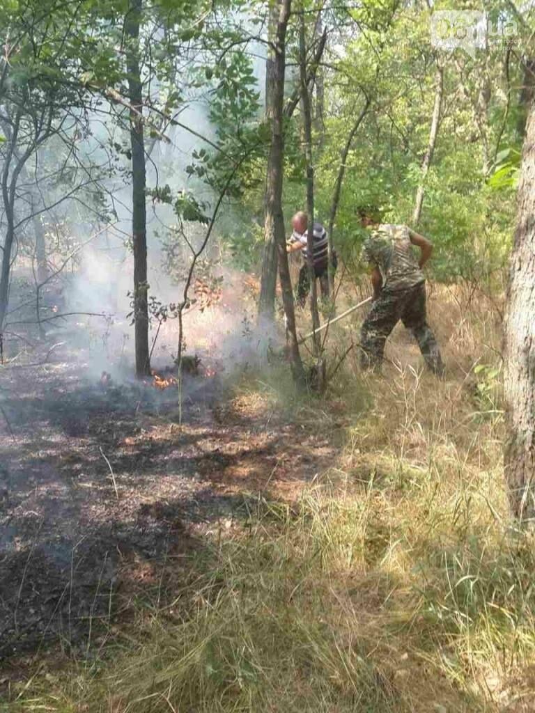 Очередной пожар на Хортице: выгорело несколько гектаров леса, - ФОТО , фото-2