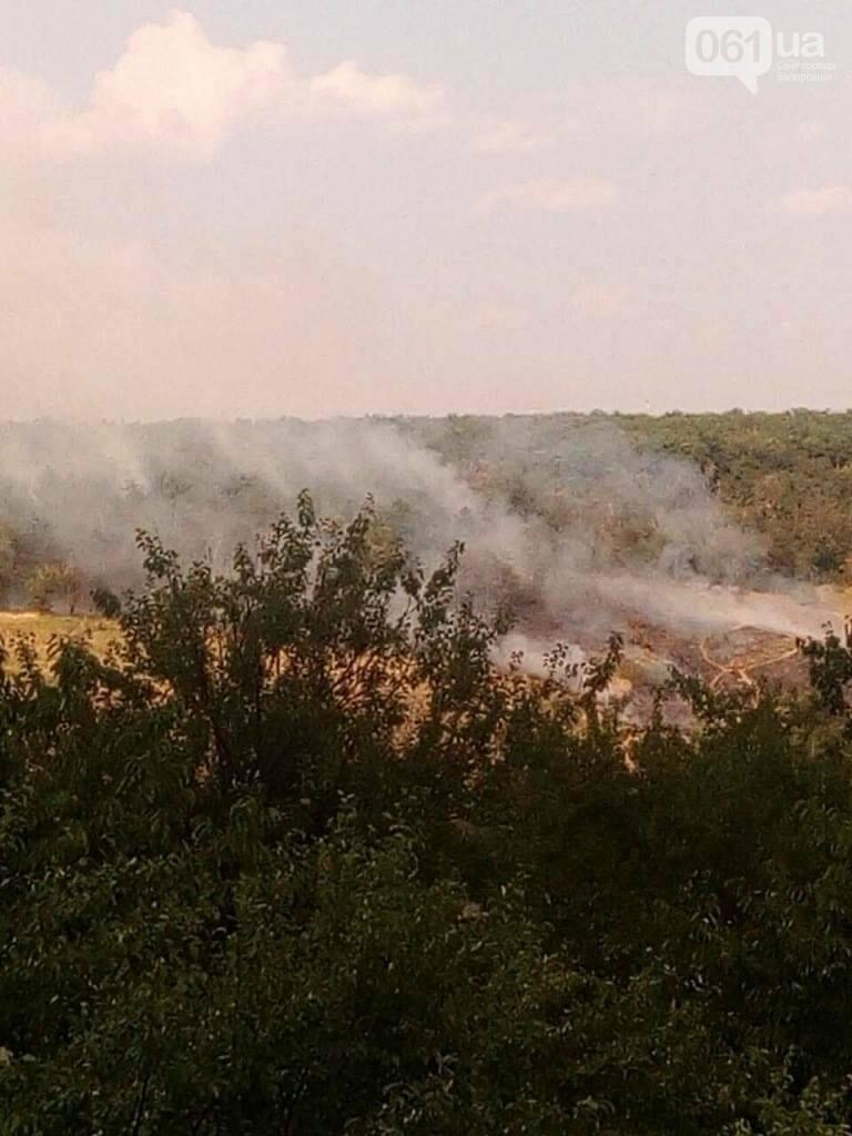Очередной пожар на Хортице: выгорело несколько гектаров леса, - ФОТО , фото-4