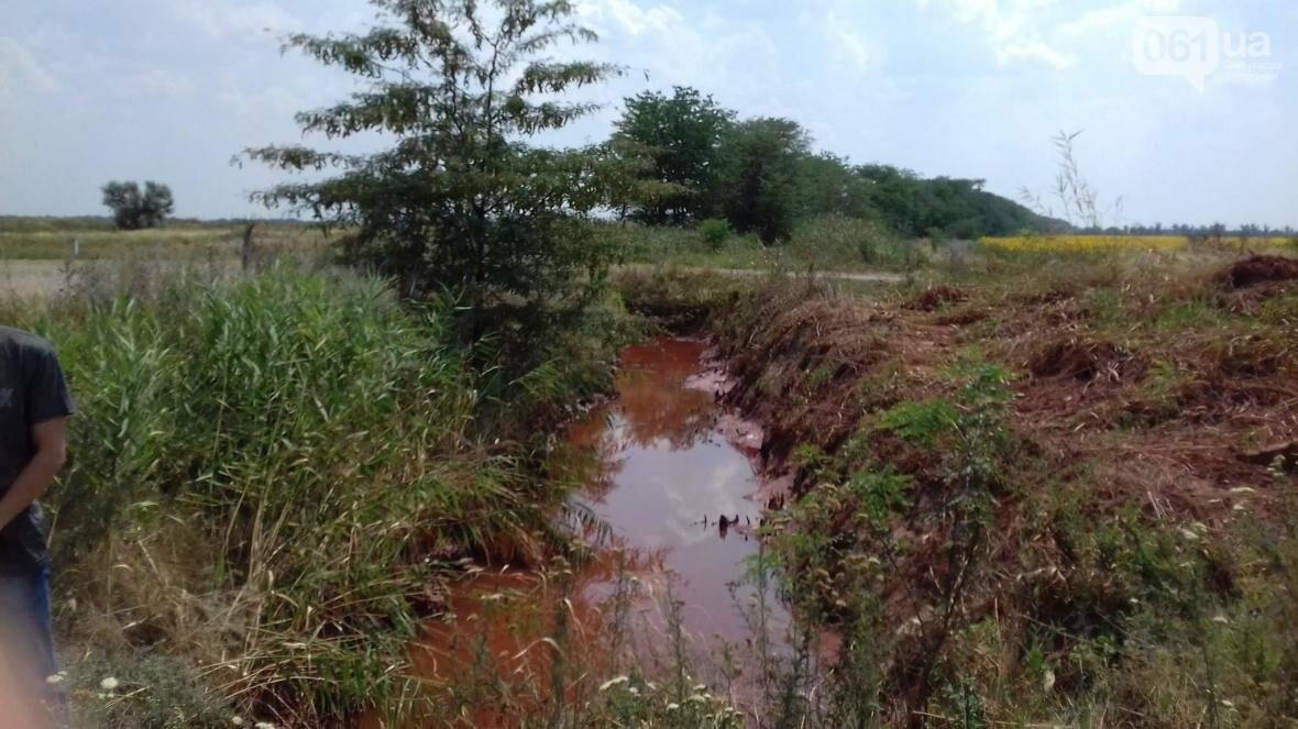 «Справжній екоцид»: чиновник, показал как запорожский завод загрязняет окружающую среду, — ФОТО, фото-1