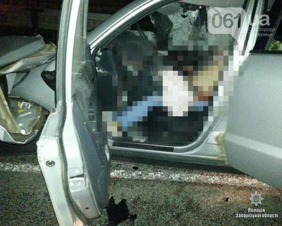 На запорожской трассе произошло смертельное ДТП: два человека погибли, — ФОТО 18+, фото-2