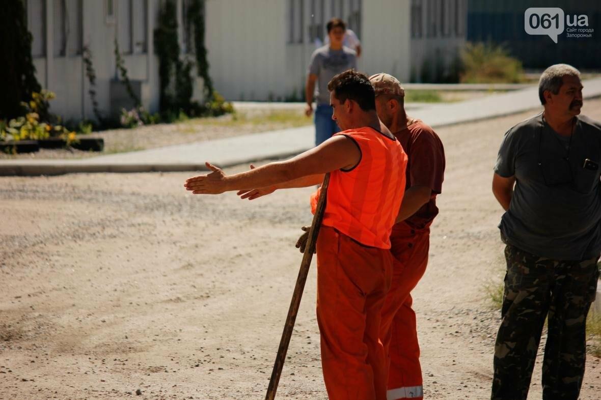 В Южном микрорайоне Запорожья ремонтируют одну из главных дорог района, - ФОТОРЕПОРТАЖ, фото-7