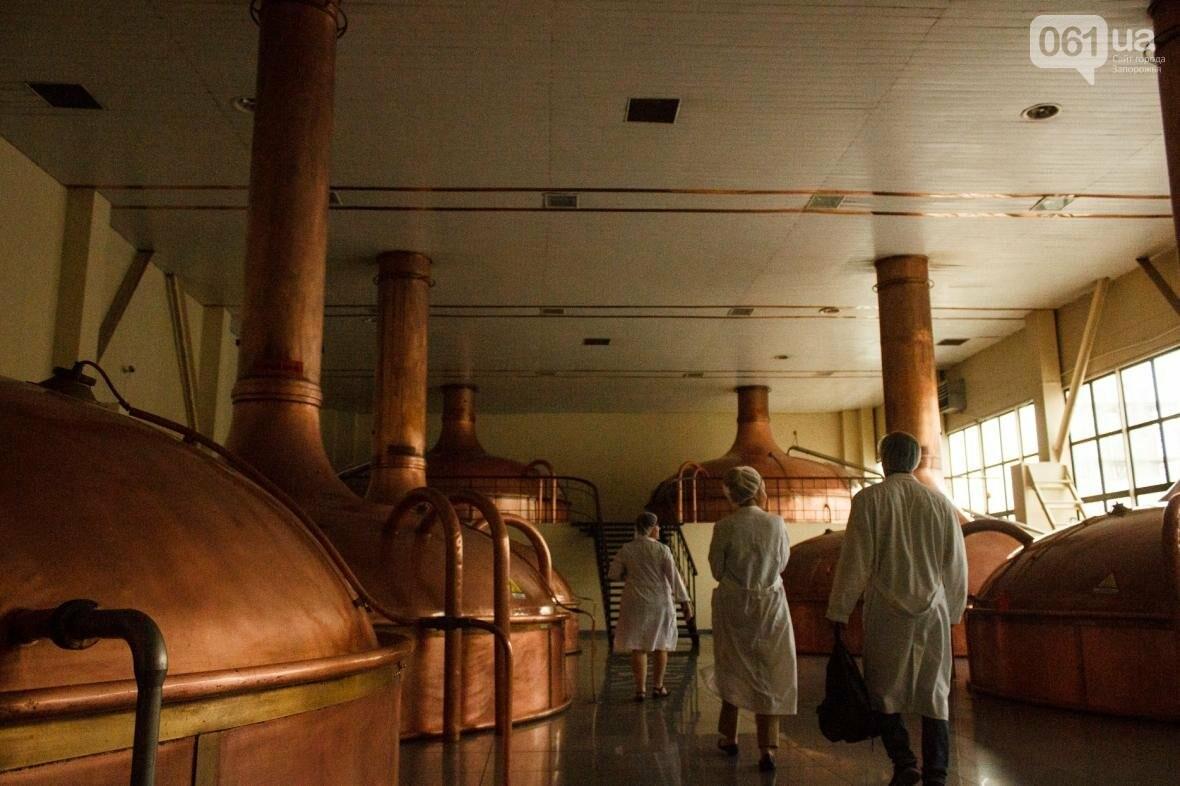 Как на запорожском заводе готовят пиво: экскурсия на производство, — ФОТОРЕПОРТАЖ, фото-2