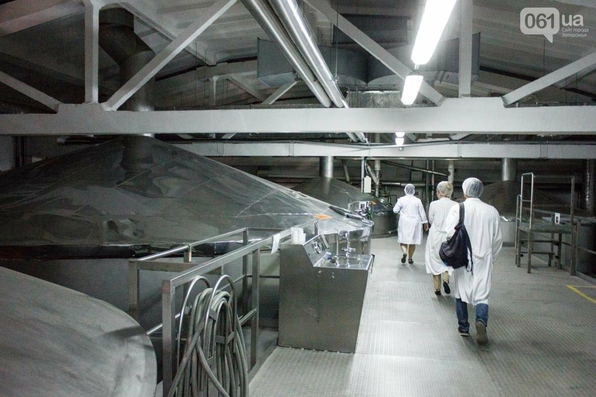 Как на запорожском заводе готовят пиво: экскурсия на производство, — ФОТОРЕПОРТАЖ, фото-5