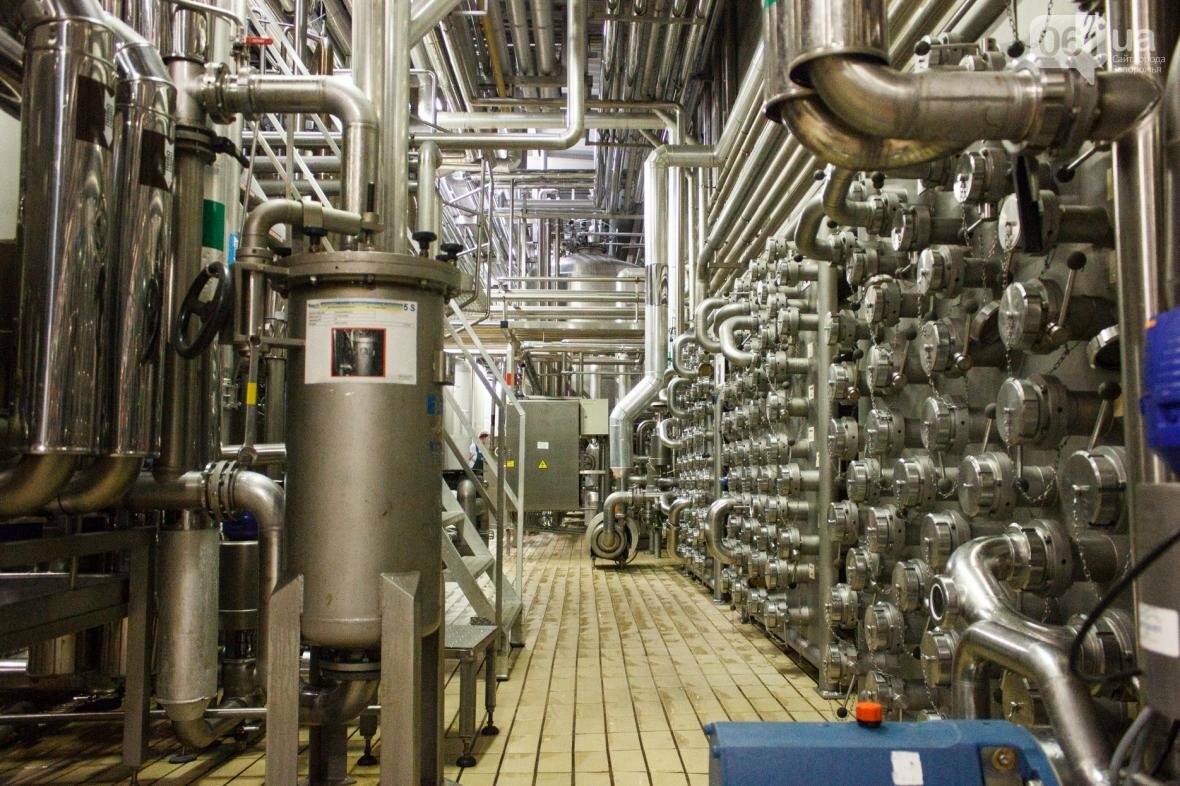 Как на запорожском заводе готовят пиво: экскурсия на производство, — ФОТОРЕПОРТАЖ, фото-9