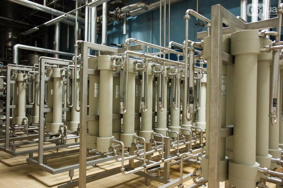 Как на запорожском заводе готовят пиво: экскурсия на производство, — ФОТОРЕПОРТАЖ, фото-15