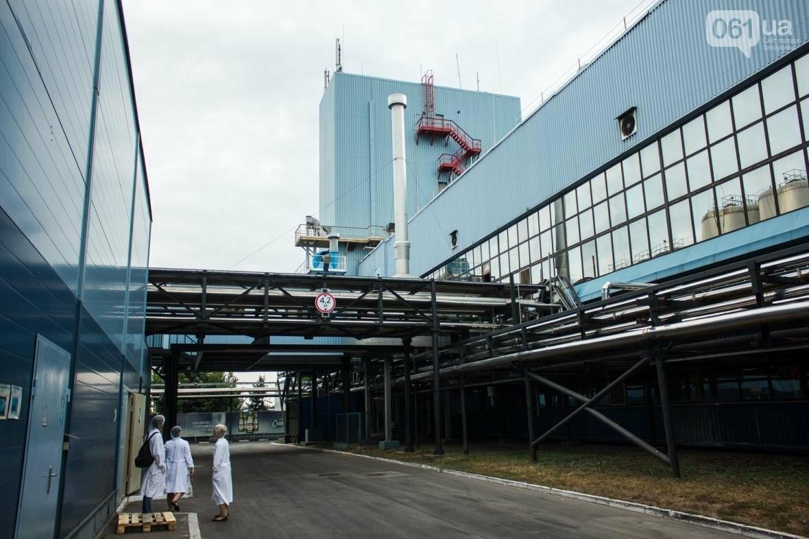 Как на запорожском заводе готовят пиво: экскурсия на производство, — ФОТОРЕПОРТАЖ, фото-13