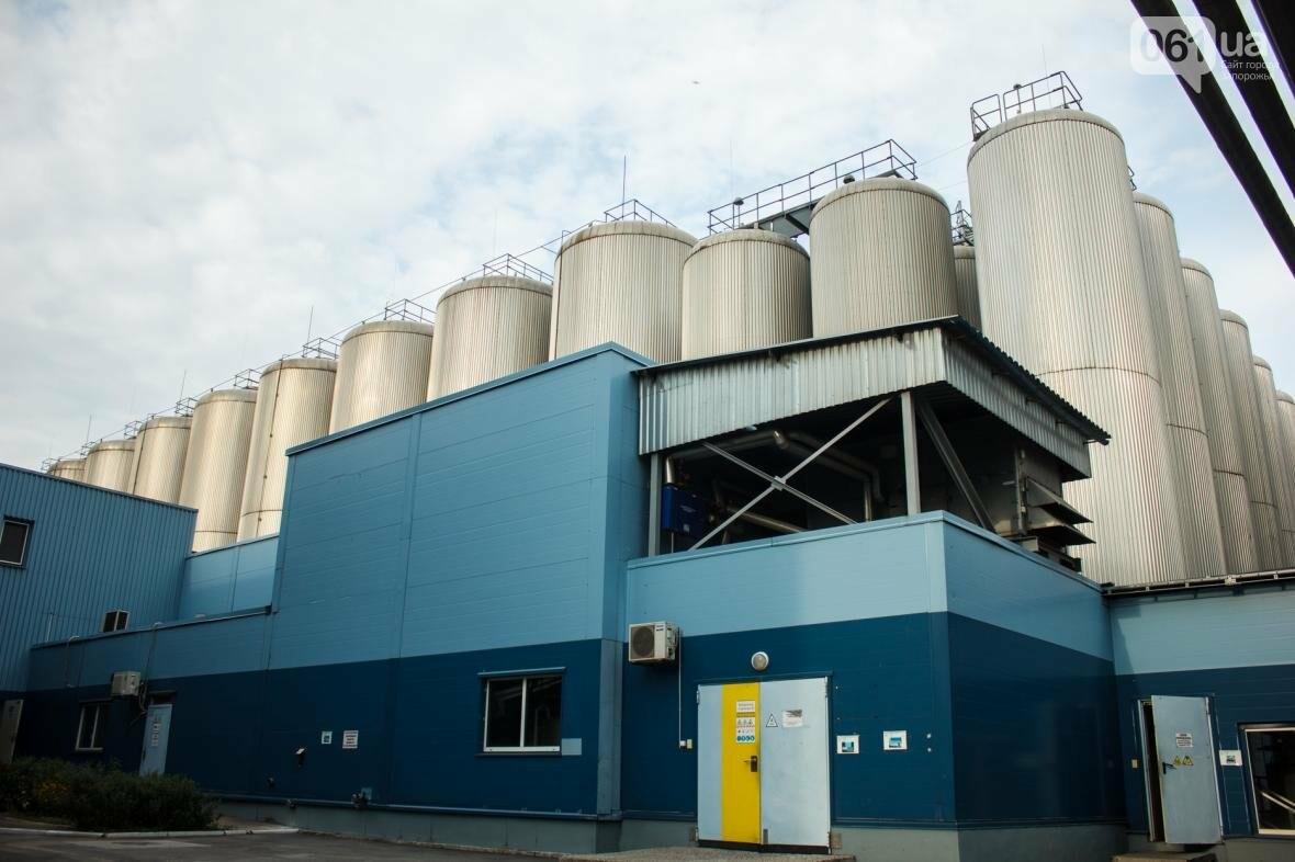 Как на запорожском заводе готовят пиво: экскурсия на производство, — ФОТОРЕПОРТАЖ, фото-12