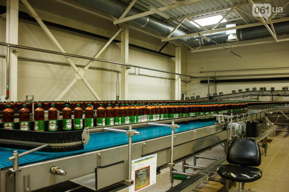 Как на запорожском заводе готовят пиво: экскурсия на производство, — ФОТОРЕПОРТАЖ, фото-22