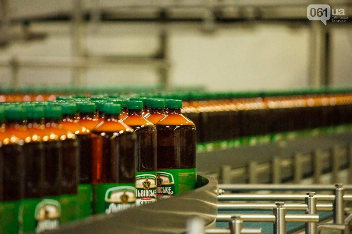 Как на запорожском заводе готовят пиво: экскурсия на производство, — ФОТОРЕПОРТАЖ, фото-23