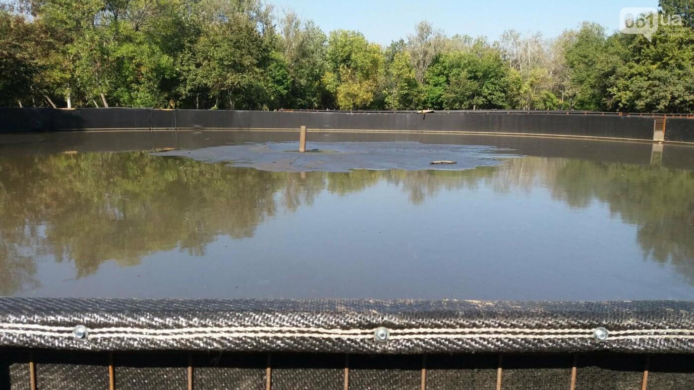 Тонны ила и кубометры воды: как в запорожской «Дубовке» чистят большой пруд, – ФОТОРЕПОРТАЖ, фото-8