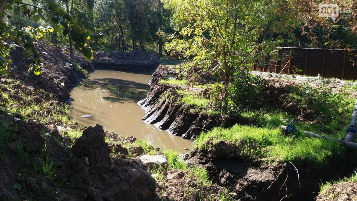 Тонны ила и кубометры воды: как в запорожской «Дубовке» чистят большой пруд, – ФОТОРЕПОРТАЖ, фото-13