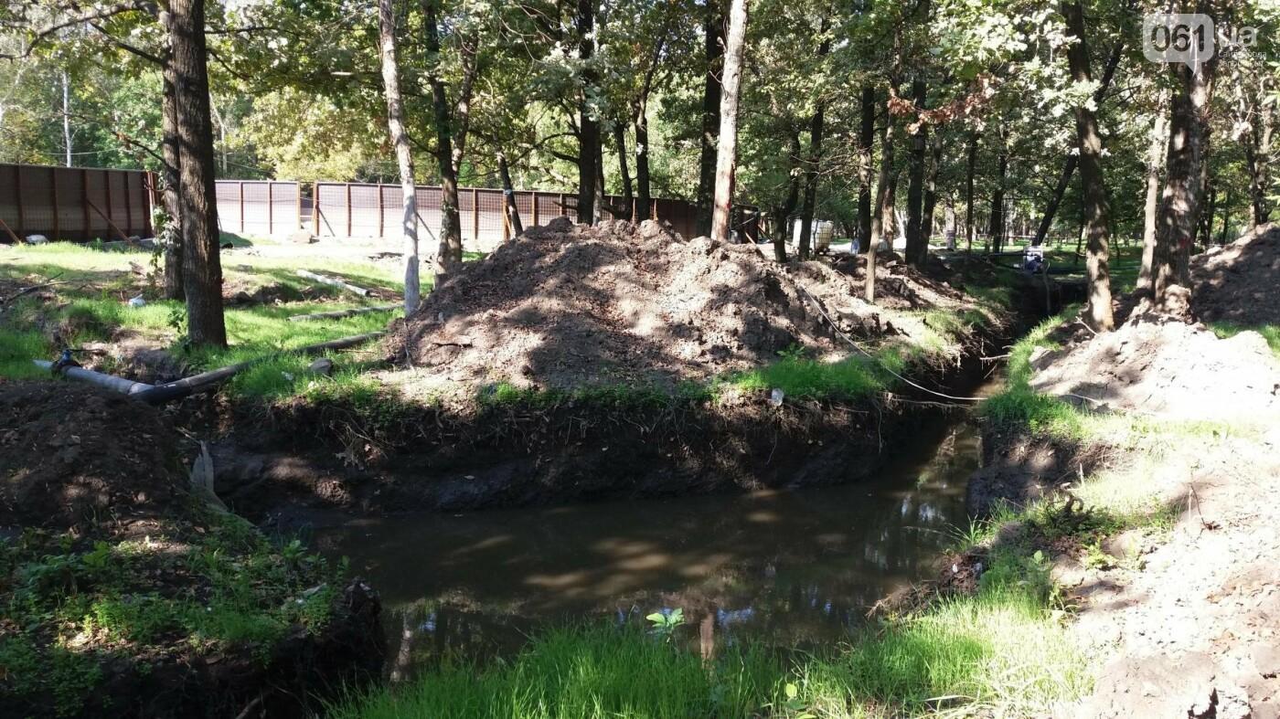 Тонны ила и кубометры воды: как в запорожской «Дубовке» чистят большой пруд, – ФОТОРЕПОРТАЖ, фото-12