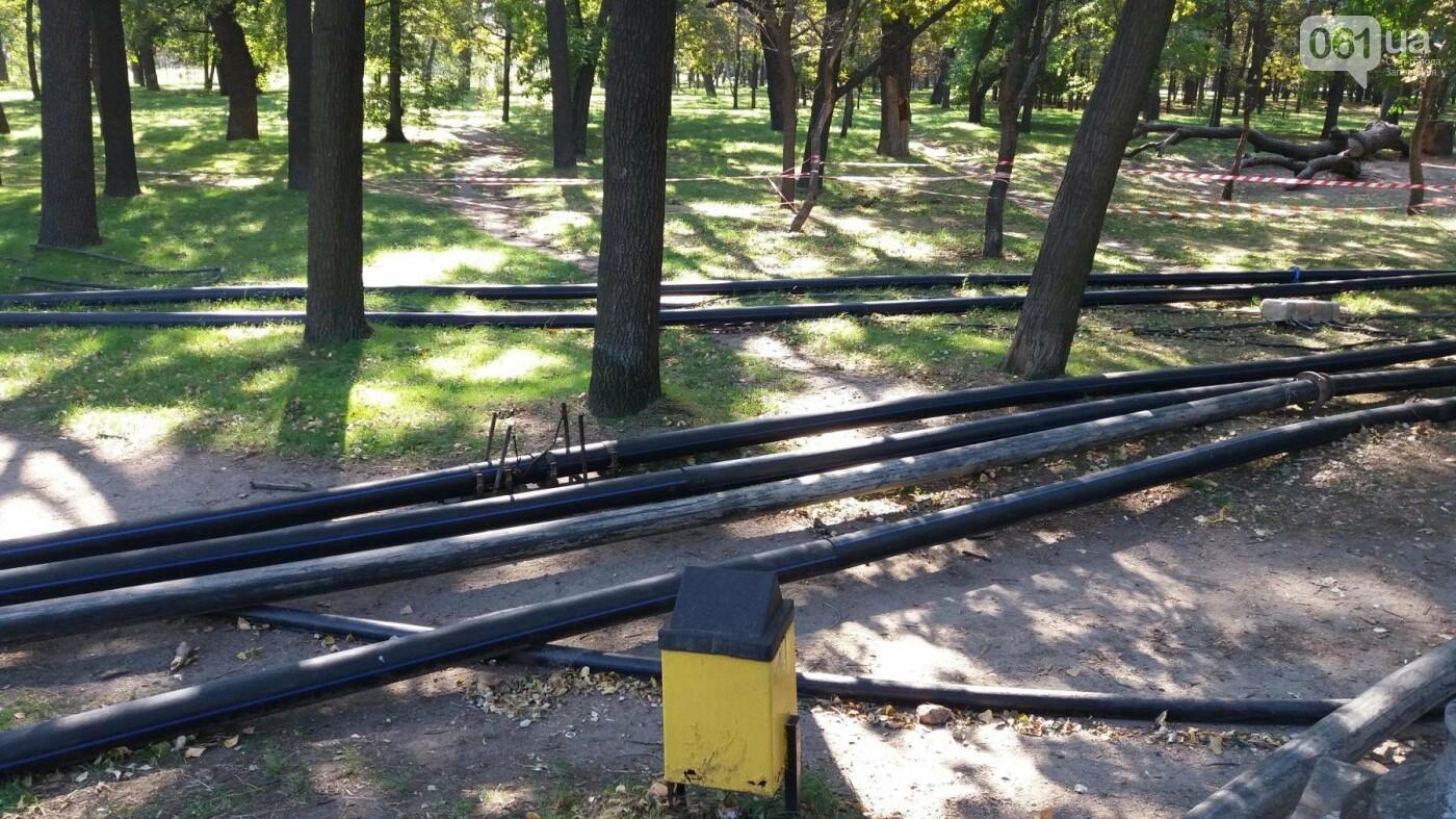 Тонны ила и кубометры воды: как в запорожской «Дубовке» чистят большой пруд, – ФОТОРЕПОРТАЖ, фото-16