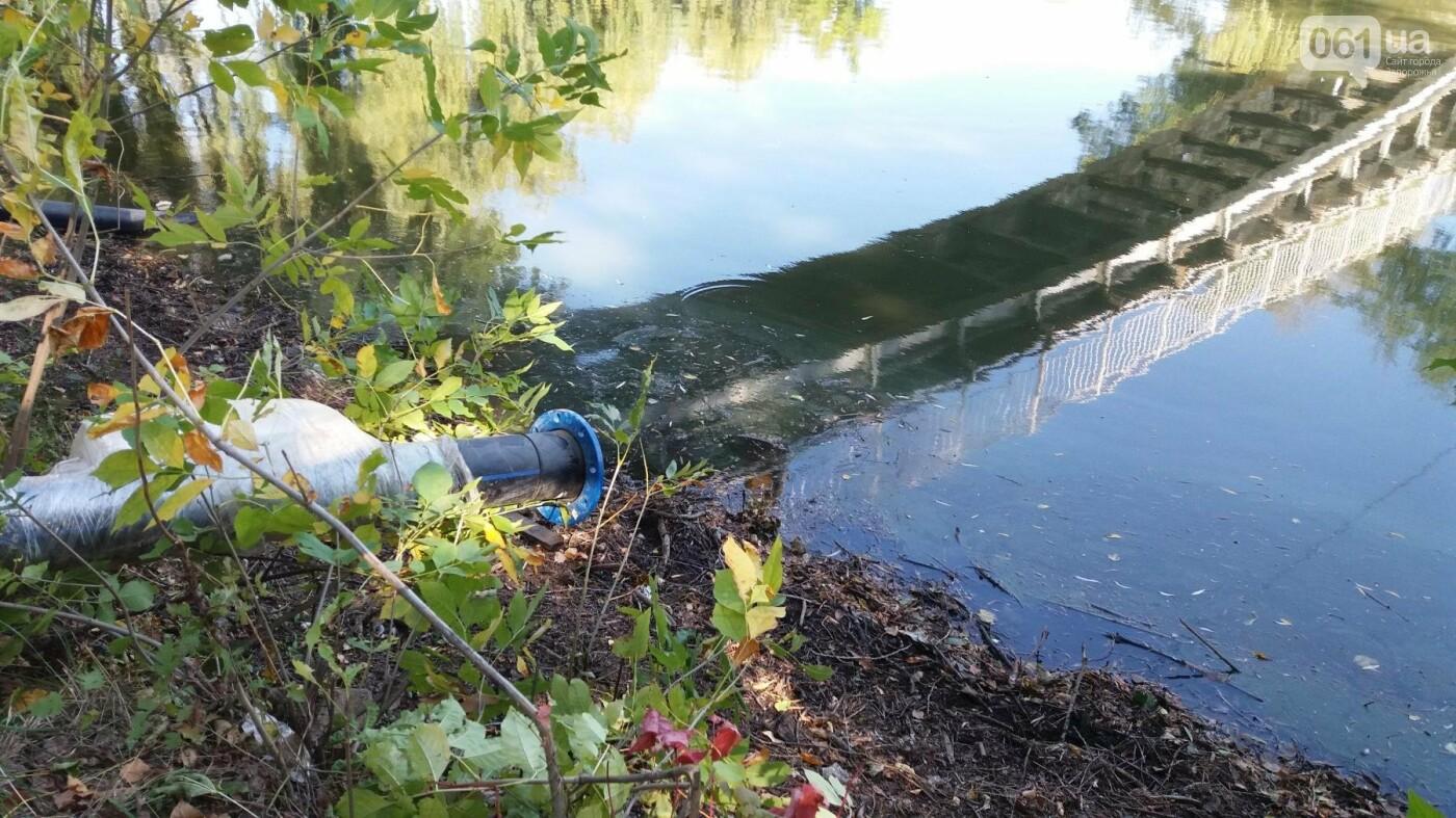 Тонны ила и кубометры воды: как в запорожской «Дубовке» чистят большой пруд, – ФОТОРЕПОРТАЖ, фото-15