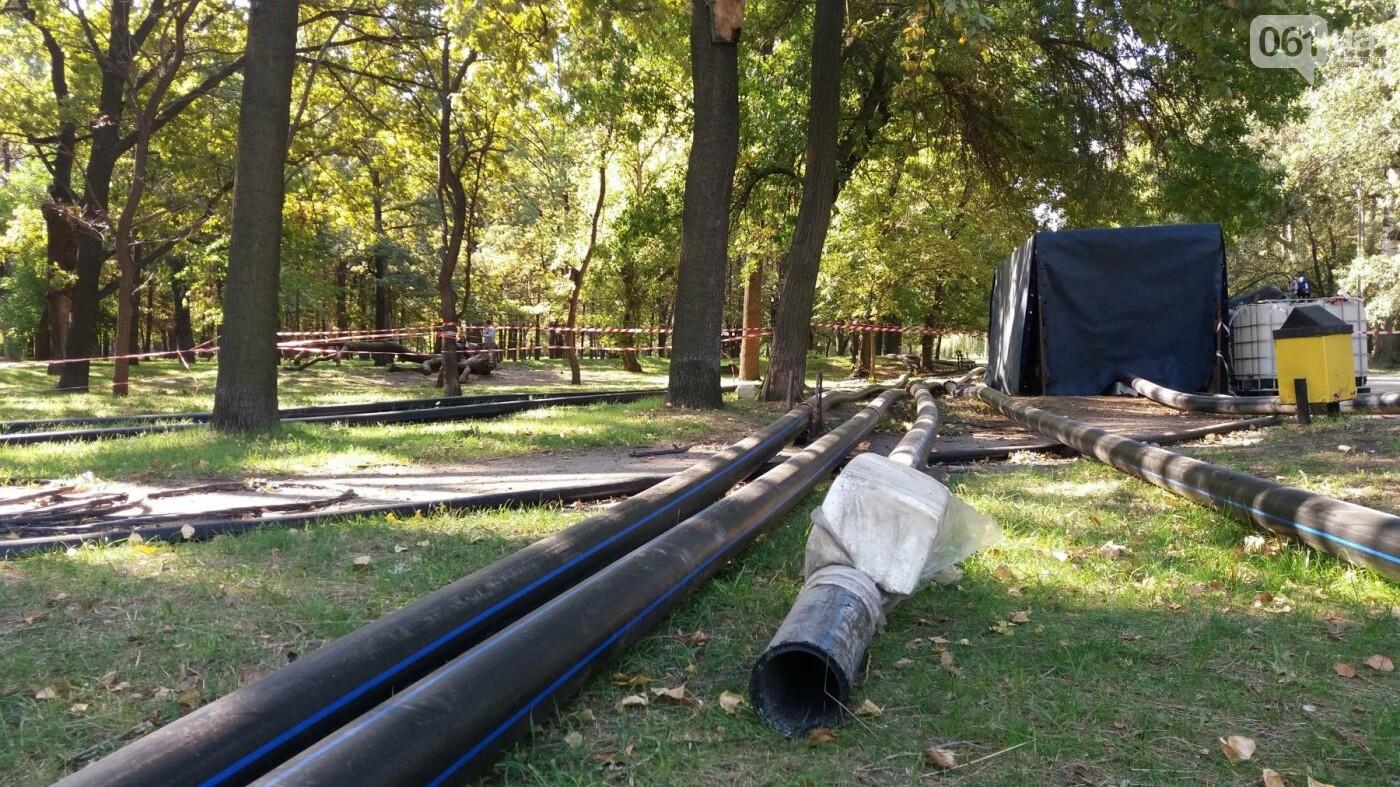 Тонны ила и кубометры воды: как в запорожской «Дубовке» чистят большой пруд, – ФОТОРЕПОРТАЖ, фото-17