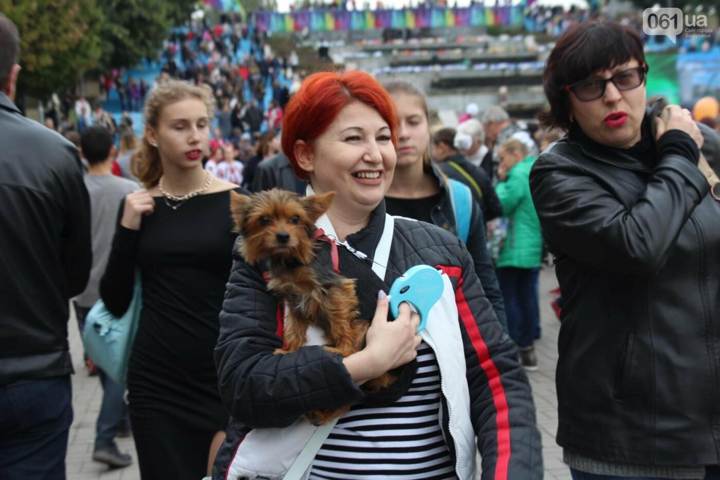 Найди себя: 55 портретов посетителей Покровской ярмарки в Запорожье, - ФОТО , фото-11