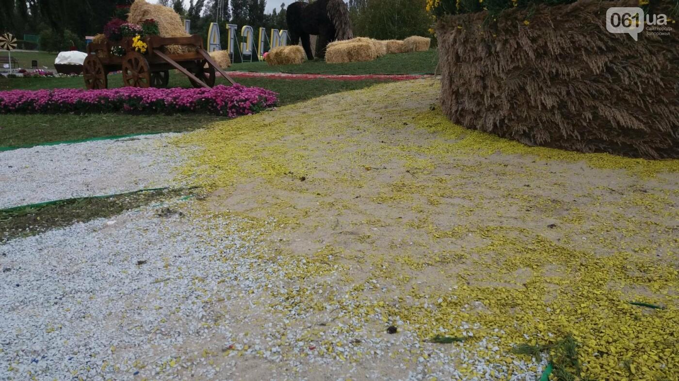 Покалеченный козак, сломанный конь и украденные цветы: запорожцы затоптали цветочные композиции ко Дню города, — ФОТОРЕПОРТАЖ, фото-14
