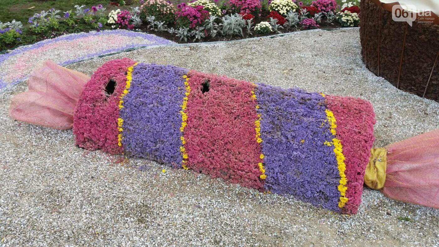 Покалеченный козак, сломанный конь и украденные цветы: запорожцы затоптали цветочные композиции ко Дню города, — ФОТОРЕПОРТАЖ, фото-15