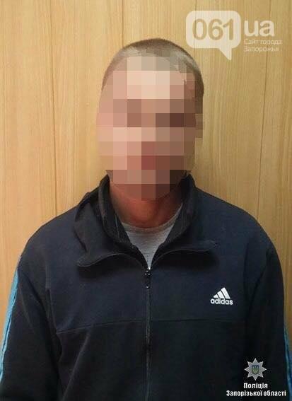 В Запорожской области парень ударил ножом пенсионерку 12 раз ради 2200 гривен , фото-1