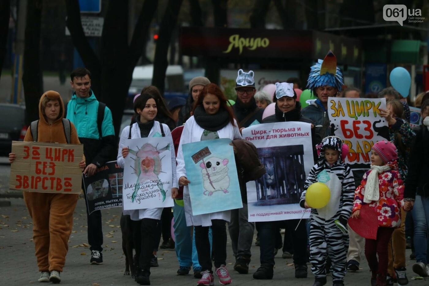 В Запорожье прошел марш за права животных, - ФОТОРЕПОРТАЖ, фото-13