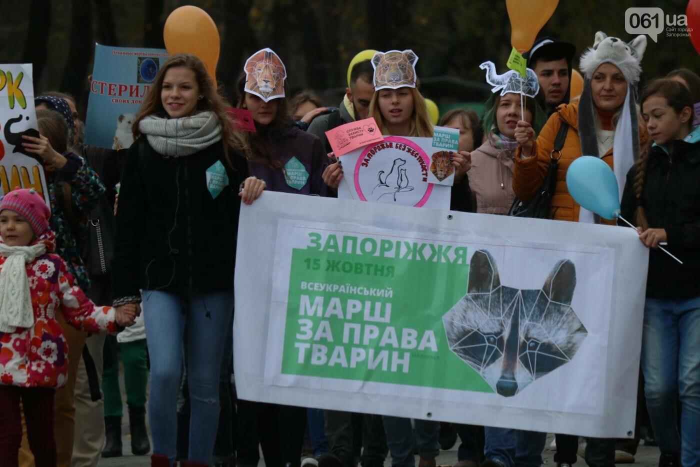 В Запорожье прошел марш за права животных, - ФОТОРЕПОРТАЖ, фото-9