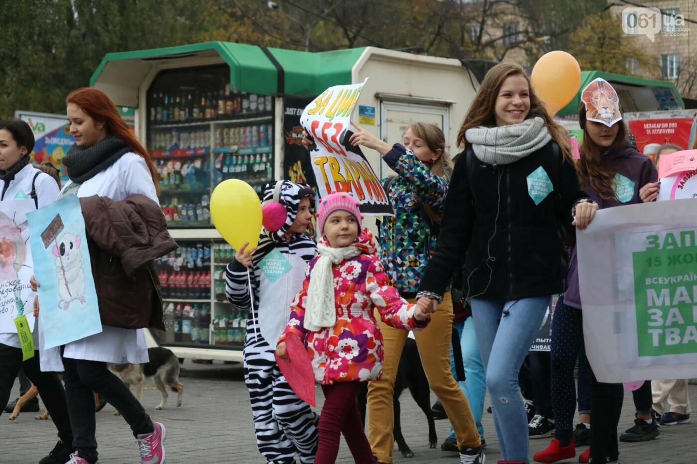 В Запорожье прошел марш за права животных, - ФОТОРЕПОРТАЖ, фото-21