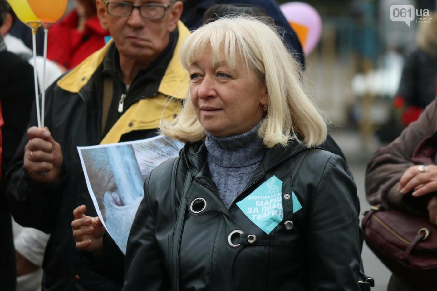 В Запорожье прошел марш за права животных, - ФОТОРЕПОРТАЖ, фото-7