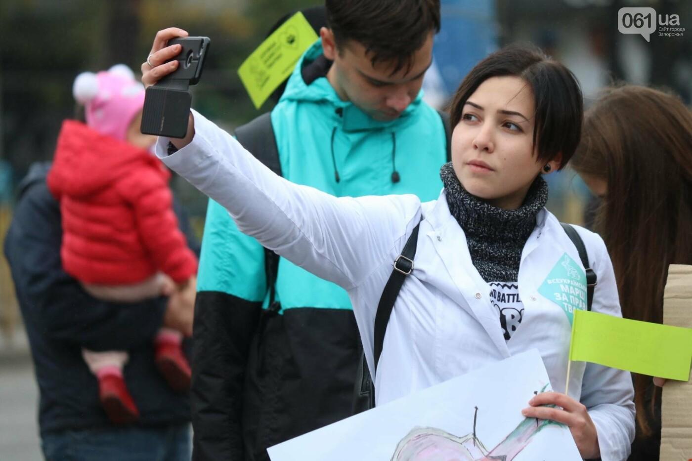 В Запорожье прошел марш за права животных, - ФОТОРЕПОРТАЖ, фото-4