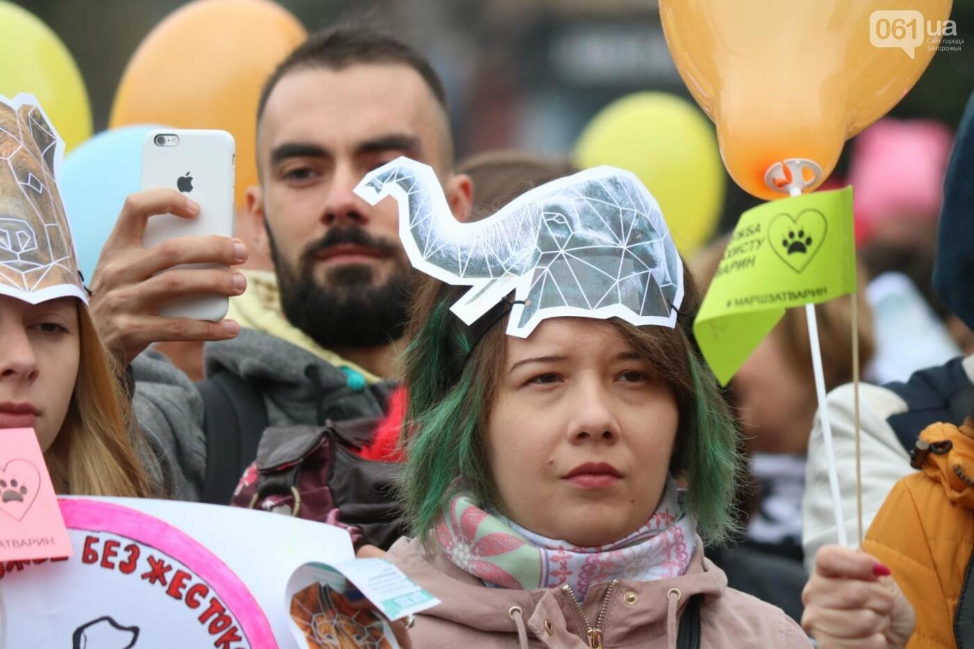 В Запорожье прошел марш за права животных, - ФОТОРЕПОРТАЖ, фото-16