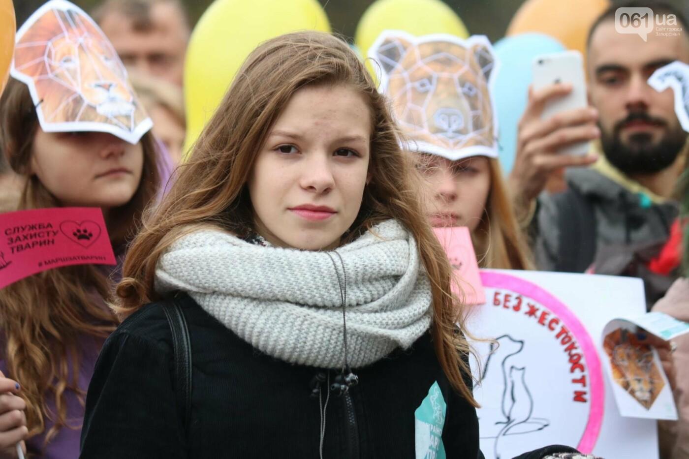В Запорожье прошел марш за права животных, - ФОТОРЕПОРТАЖ, фото-11