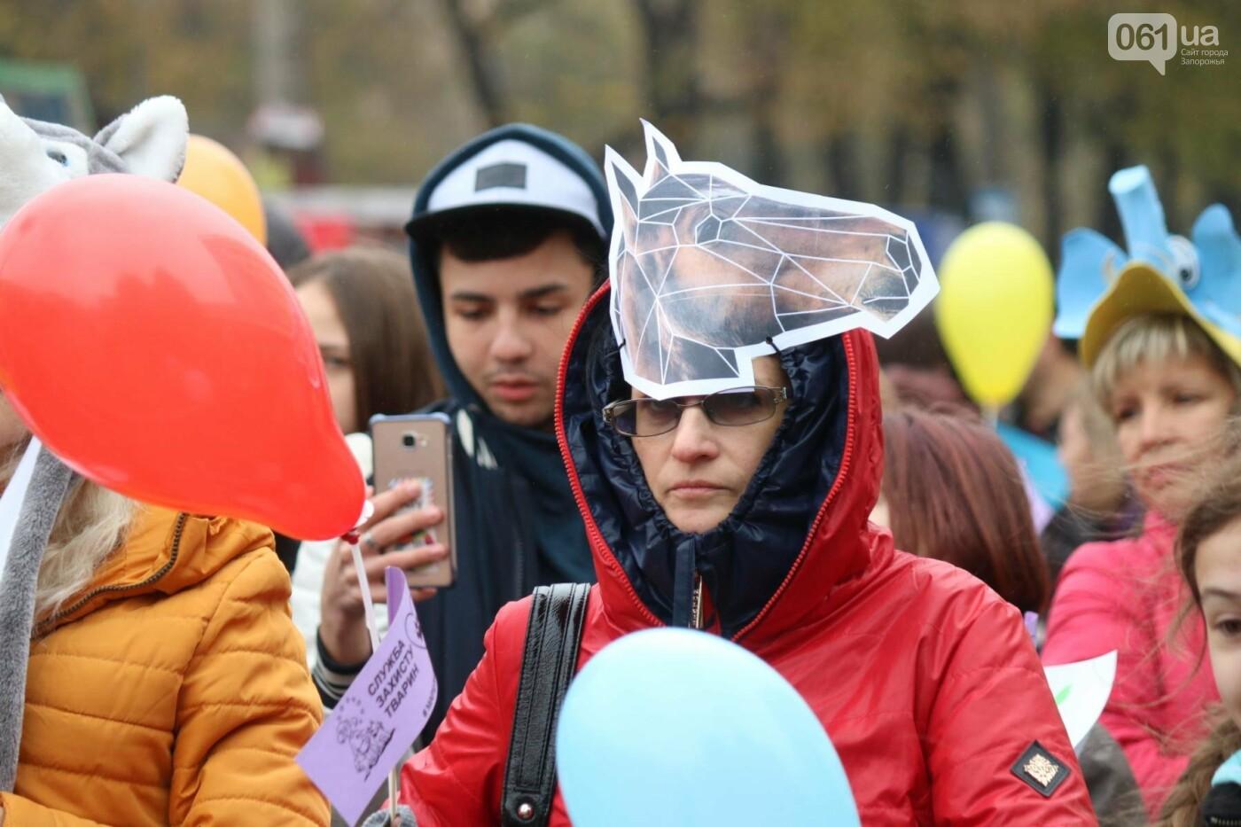 В Запорожье прошел марш за права животных, - ФОТОРЕПОРТАЖ, фото-10