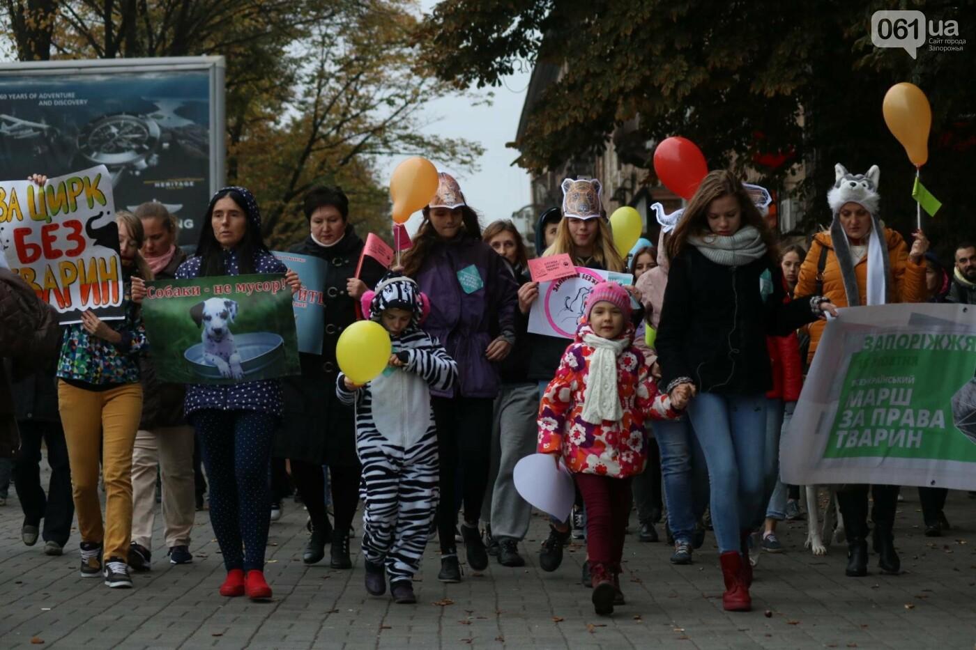 В Запорожье прошел марш за права животных, - ФОТОРЕПОРТАЖ, фото-20
