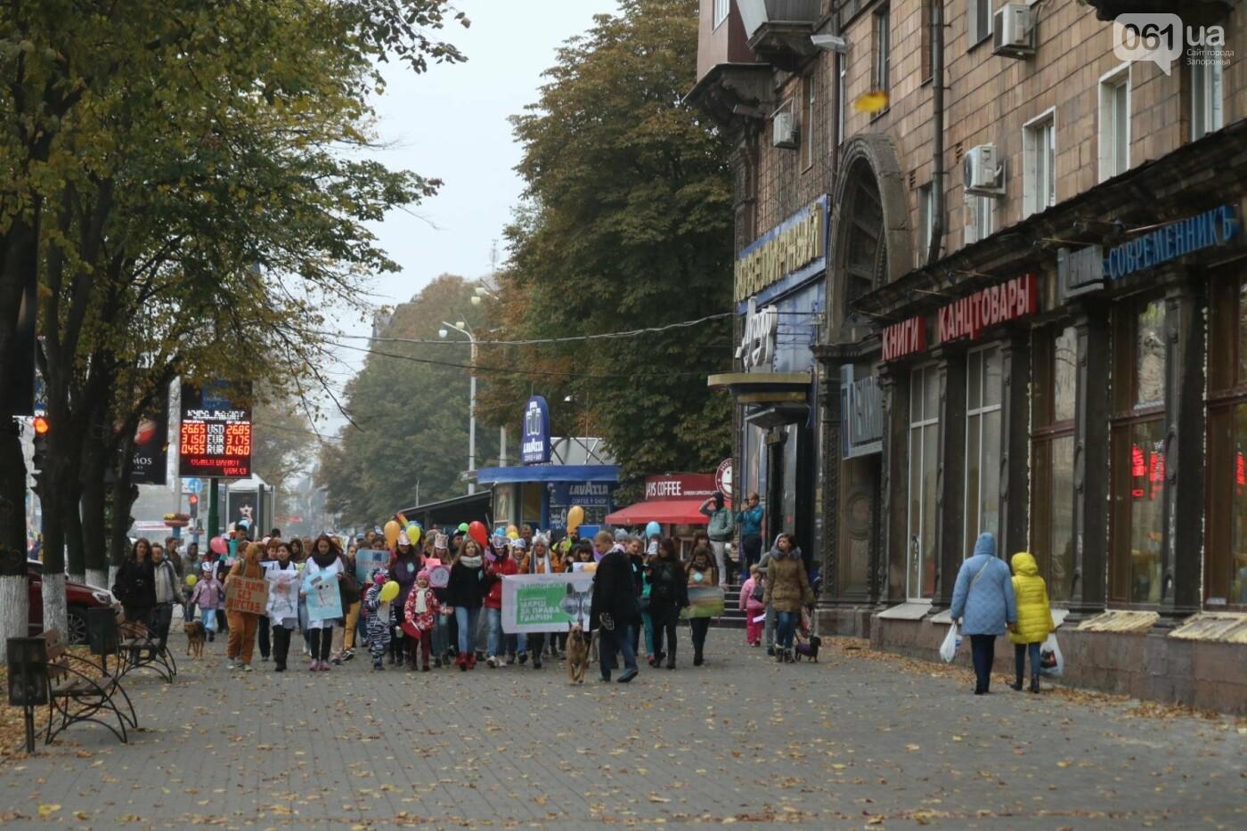 В Запорожье прошел марш за права животных, - ФОТОРЕПОРТАЖ, фото-24