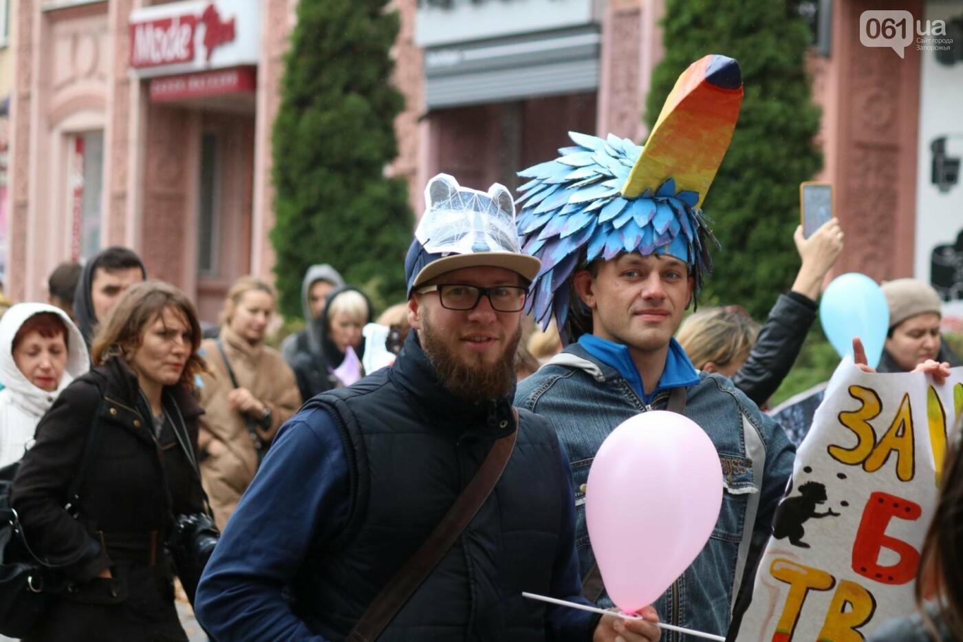 В Запорожье прошел марш за права животных, - ФОТОРЕПОРТАЖ, фото-14